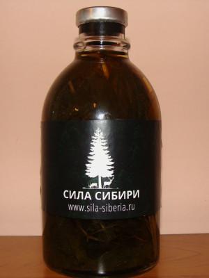 Листья женьшеня настойка Сила Сибири
