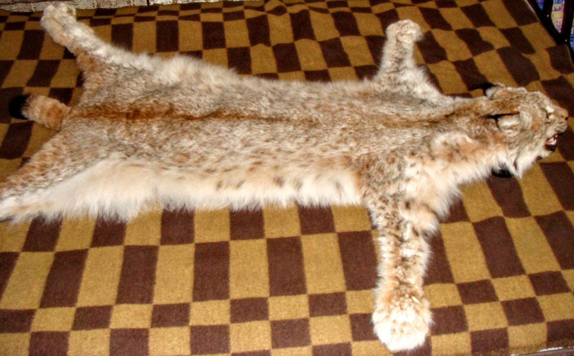 Ковер из рыси (121 см) (5)